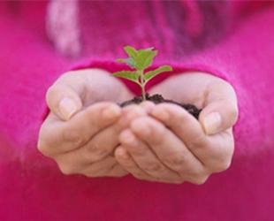 Sự sống, môi trường, đẳng cấp loài và sự văn minh