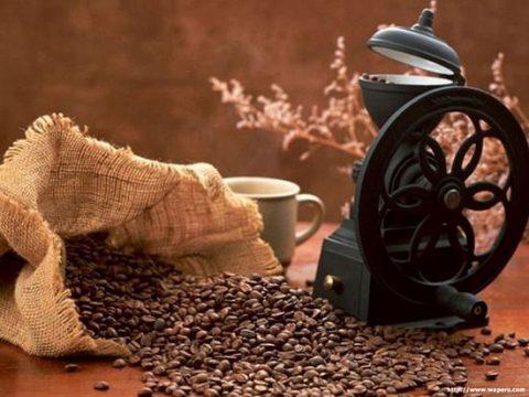 Tây Nguyên – Cafe kêu cứu