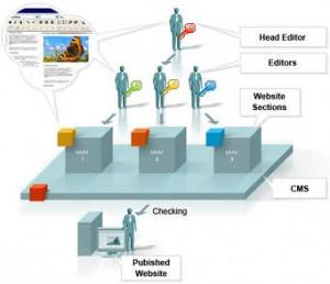 Quản lý hệ thống và chiến lược kinh doanh